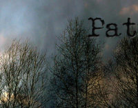 PATTI – Alberi abbattuti dal vento, incidente sulla A/20, sul viadotto Montagnareale ( + aggiornamenti)