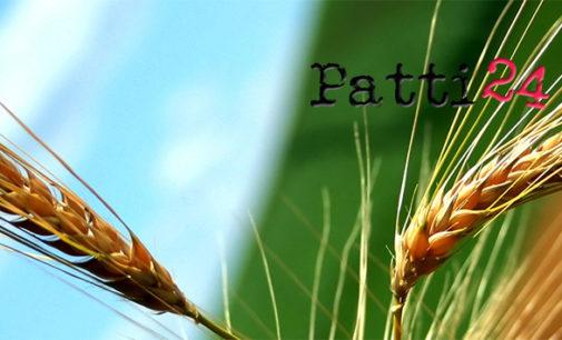 PATTI – Convegno sulle prospettive del piano di sviluppo agricolo 2014/2020
