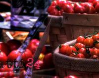 MESSINA – No di Confindustria a trasferire il mercato di Giostra nell'area fieristica
