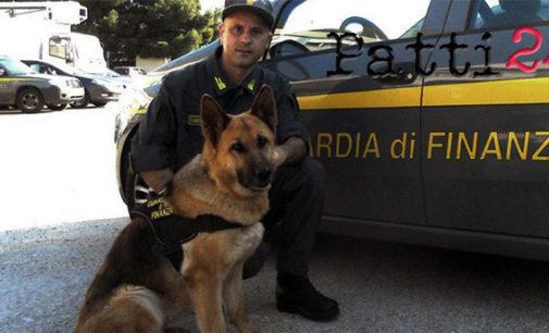 MESSINA – Arrestato 35enne palermitano con 2 Kg di cocaina in auto, fiutata dai cani delle Fiamme gialle