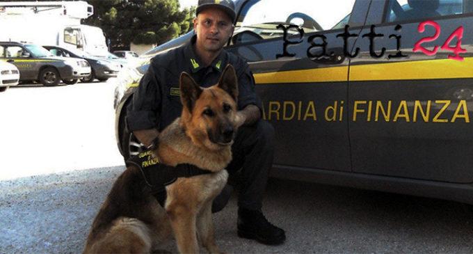 """MESSINA – Operazione antidroga """"Holiday"""" , la Guardia di Finanza ha eseguito 14 misure cautelari, di cui 12 in carcere, e sequestrato beni per oltre 250 mila euro"""