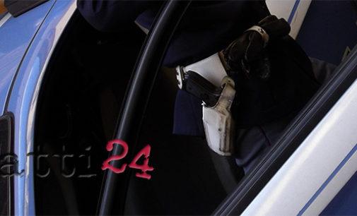 SANT'AGATA DI MILITELLO – Oggi nuova operazione di Polizia sui Suini neri dei Nebrodi, queta volta abusivamente cacciati e macellati clandestinamente