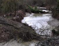 NEBRODI – Interventi di manutenzione sul demanio idrico fluviale effettuati dall'Esa