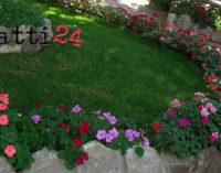 MILAZZO – 40 mila euro per recuperare la giardineria comunale del Borgo, appaltati i lavori