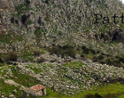 GIOIOSA MAREA – La nuova PAC: quali prospettive di sviluppo del territorio dei Nebrodi, iniziativa pubblica oggi in programma alle 15.30