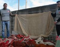 MILAZZO – Attività di contrasto della Guardia Costiera alla pesca illegale con attrezzi non autorizzati