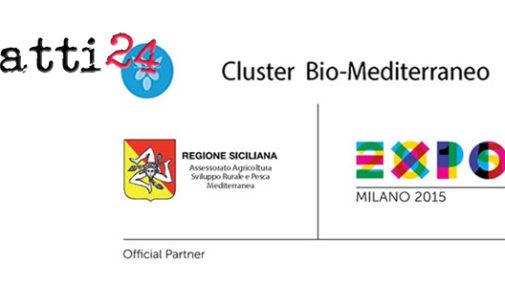 CAPO D'ORLANDO – Capo d'Orlando all'Expo 2015 avrà ospitalità nel Cluster del Bio-Mediterraneo