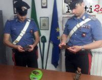 TORTORICI – 25enne arrestato per detenzione di sostanze stupefacenti finalizzata allo spaccio