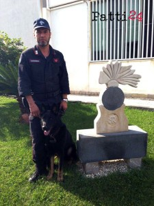 Carabinieri_Taormina_Cane_Auro_003