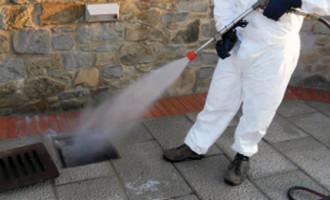 PATTI – Il caldo sta favorendo la proliferazione di zanzare, zecche e topi. Interventi con urgenza del Comune
