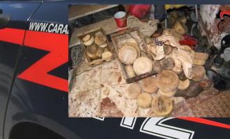 FONDACHELLI FANTINA – Sequestrati 120 capi di bestiame e 100 kg di formaggi in cattivo stato di conservazione