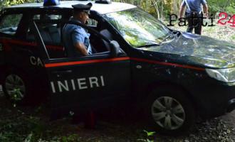 MESSINA – Tagliavano senza autorizzazione legna da un'area demaniale militare, 2 denunciati per furto in concorso