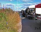 PATTI – Il mercatino di via Meazza tra le erbacce perenni