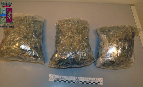 MESSINA – Trasportavano 1528,96 grammi di marijuana. 3 arresti ai caselli autostradali