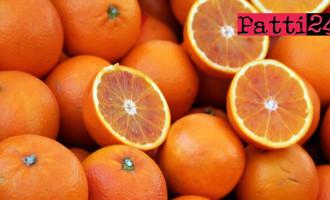 MESSINA – Ambulantato abusivo. Sequestrati 1000 kg di arance a venditore  catanese
