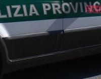 PATTI – Oggi, martedì 5 aprile, Autovelox sulla S.P. 122 Patti-San Piero Patti