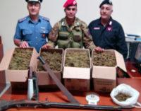 NEBRODI – Continuano i controlli a tappeto. Arrestati due pregiudicati e rinvenuti 13 chili di droga