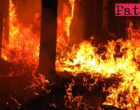 LIBRIZZI – In località Acquaverni, un rogo ha mandato in fumo una vasta macchia mediterranea.