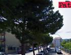 PATTI – In via Aldo Moro per i danni al manto stradale si sta valutando l'estirpazione dei pini