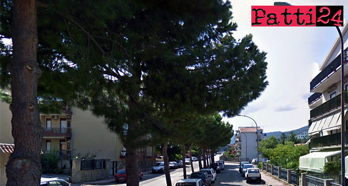 PATTI – Privi di manutenzione i pini piantati in via Aldo Moro creano problemi di assoluto rilievo