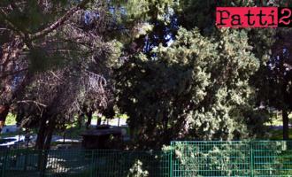 PATTI – Parco Robinson. Interventi di pulizia e di manutenzione per renderlo agibile entro breve tempo
