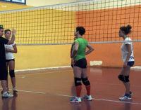 BROLO – Ha preso il via la stagione della Saracena Volley