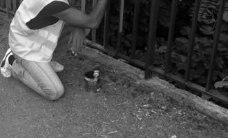 MILAZZO – Convenzione con l'Ufficio di esecuzione penale. I condannati faranno lavori socialmente utili