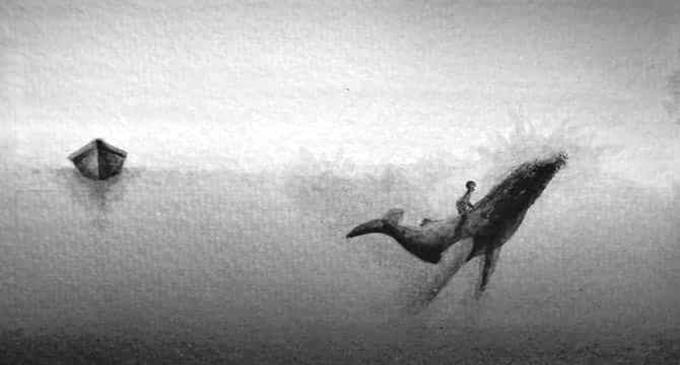 CAPO D'ORLANDO – Balena di ghiaccio, il 10 marzo il primo laboratorio