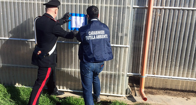"""SANTA LUCIA DEL MELA – Sequestrato un capannone di circa 1.000 mq adibito a deposito e stoccaggio della """"pollina"""" e un'area di circa 100 mq"""