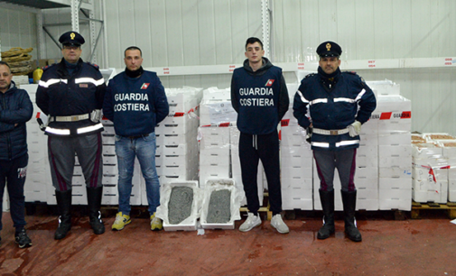 VILLAFRANCA TIRRENA – Sequestrati 1309 kg. di novellame di sarda e gamberi.
