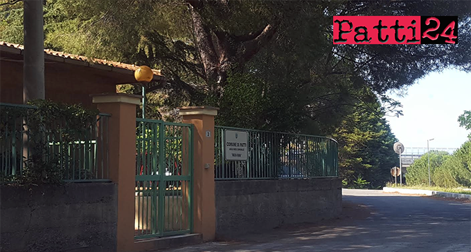 """PATTI – Reti plastificate sui pini attorno asilo nido """"Marilena Faranda"""", per contenere caduta aghi ed escrementi dei piccioni."""