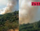 LIBRIZZI – Incendio in località Pietrasanta. Per domare le alte fiamme si rende necessario l'intervento aereo