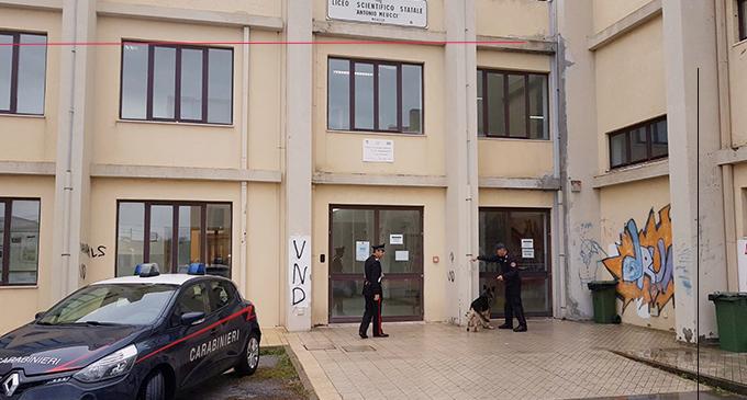 """MILAZZO – Controlli con l'ausilio di unità cinofile """"antidroga"""" all'esterno e nei dintorni del Liceo Scientifico Statale di Milazzo. Rinvenuta bustina con marjuana"""