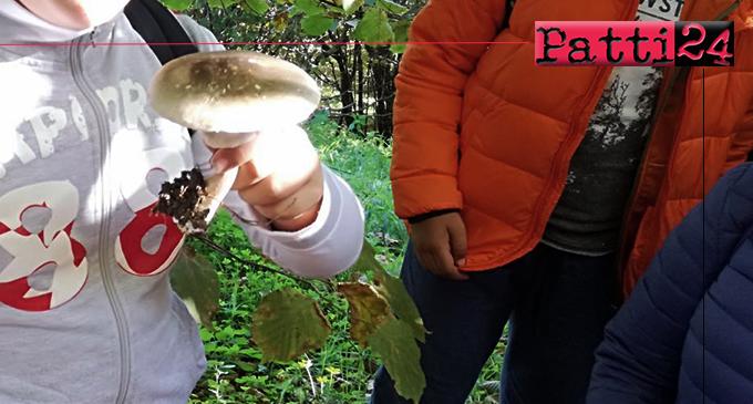 PATTI – I. C. Lombardo Radice. Avviato e realizzato un progetto per far comprendere ai ragazzi la tradizione micologica del territorio