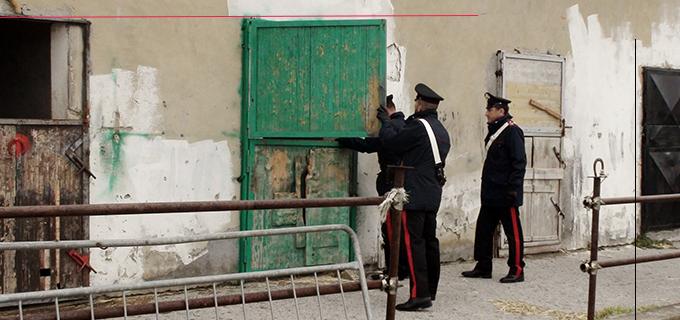 CESARO' – Allevatore di Cesarò arrestato per detenzione abusiva di arma e ricettazione