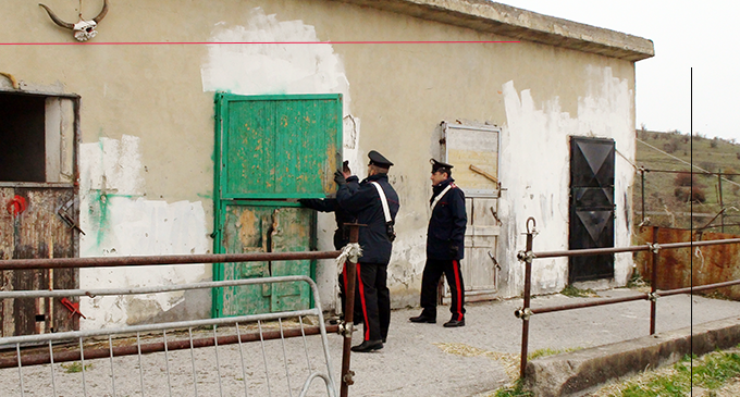 S. STEFANO DI CAMASTRA – Controlli accentuati a Caronia, S. Stefano di Camastra e San Fratello. Denunce e segnalazioni
