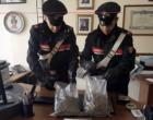 """MESSINA – Nascondevano marijuana nel giardinetto antistante l'abitazione con a guardia un cane """"CORSO"""" di grossa taglia. Arrestata coppia di 21enni"""