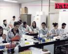 PATTI – Quattro studenti dell'IIS Borghese-Faranda di Patti parteciperanno a uno stage al Dipartimento di Biologia e Biotecnologie dell'Università di Pavia