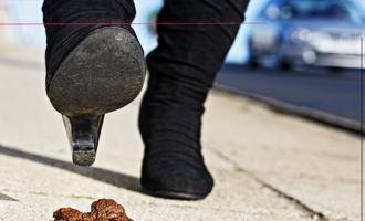 PATTI – Diffusomalcostume di tanti proprietari di cani che lasciano escrementi in strada. Sanzionare l'inciviltà… perchè ne abbiamo le scarpe piene