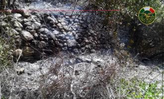 CONDRO' – 79enne causa innesco incendio che si è propagato anche in terreni limitrofi di altri proprietari. Denunciato