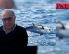 """FEDAGRIPESCA SICILIA – Nino Accetta: """"Decreto Tonno Rosso. Le nostre marinerie intollerabilmente ignorate e mortificate … """""""