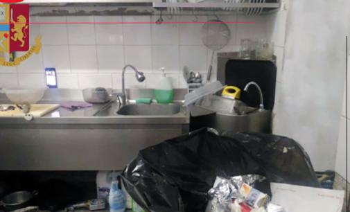 MESSINA – Versava in condizioni igieniche preoccupanti con presenza massiccia di scarafaggi. Chiusa paninoteca del centro