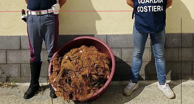 GIOIOSA MAREA – Contrasto della pesca di frodo in località San Giorgio. Sequestrate reti, pesce e natante