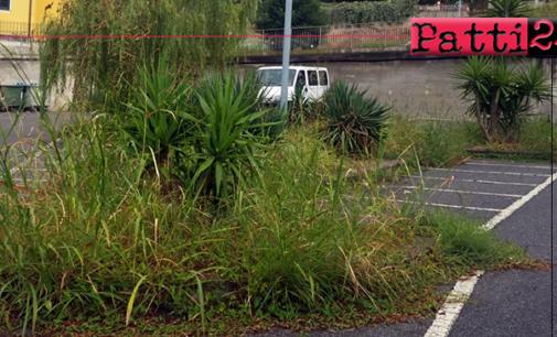 PATTI – Folta vegetazione nel parcheggio di via De Gasperi. Un altro degli emblemi del degrado e del disinteresse