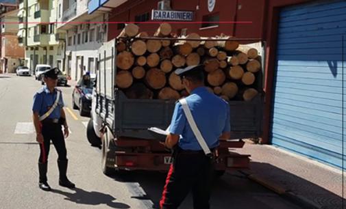 ALCARA LI FUSI – Furto di legname all'interno del Parco dei Nebrodi. Un arresto