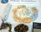 MESSINA – Rinvenuti in casa 176,30 grammi di cannabis modificata. 32enne arrestato per detenzione di droga ai fini di spaccio