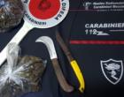 MESSINA – Trovato in possesso di marijuana. Arrestato 25enne barcellonese.