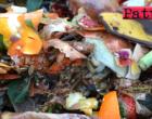 """SICILIA – Rifiuti, la Regione accelera sul compostaggio domestico. Ai sindaci: """"Pratica da incentivare per ridurre costi e scontare le bollette"""""""
