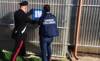 SANTA LUCIA DEL MELA  – Sversamento di liquami e illecito deposito di deiezioni di origine animale. Sequestro presso azienda zootecnica.