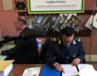 """BARCELLONA P.G. – Operazione """"braccianti fantasma"""". Truffa ai danni dell'INPS per oltre 3 milioni di euro."""